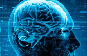 Read more about the article How Neuroscience Has Changed Things Around